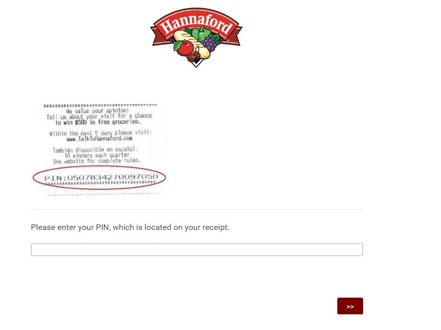 Hannaford Customer Survey