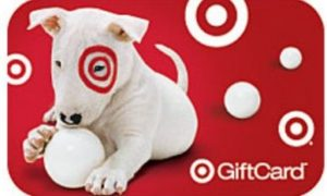 Target Guest Experience Survey